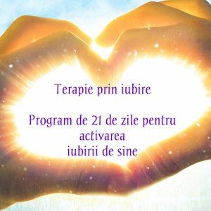 PROGRAM ONLINE TERAPIA PRIN IUBIRE