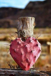 Ranile din iubire